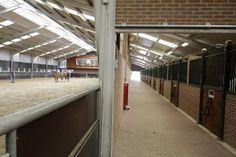 Indoor arena and indoor #stables