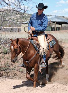Ranch Horse Riding Fundamentals – Part 1 Ranch Riding, Trail Riding, Horse Riding, Cute Horse Pictures, Horseback Riding Tips, Broken Horses, Horse Training Tips, Cute Horses, Saddle Pads