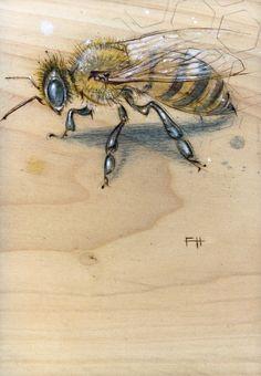 "Bee#1 -- Pyrography and natural pigments on poplar (indigo, pollen, zinc) ~7"" x 9"""