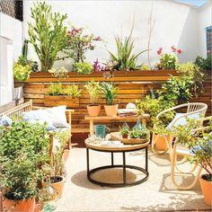 14 Mejores Imágenes De Cocina Exterior Plantas De Exterior