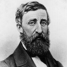Der Reichtum eines Menschen bemisst sich an der Zahl der Dinge, um die er sich nicht kümmern muss.  Zitat von Henry David Thoreau, Amerikanischer Schriftsteller.