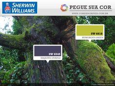SW 6545 - Majestic Purple | SW 6918 - Humorous Green