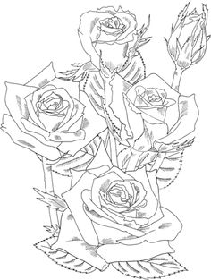 grandiflora-prominent-bush-roses-coloring-page.gif (361×480)