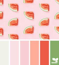 { fresh hues } image via: @colorscollective