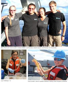 http://www.princeton.edu/nitrogen/news/archive/?id=8162    Investigating the role of eukaryotic phytoplankton in carbon and nitrogen cycling in the Sargasso Sea.
