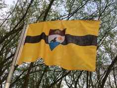 BITCOIN is becoming the national currency for Liberland Free Republic, Teaching Skills, Syrian Refugees, Alternative News, Press Release, Flag, Business News, Colours, European Countries