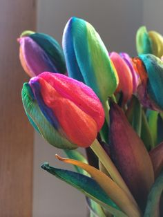 Rainbow Tulips - Fresh by FTD