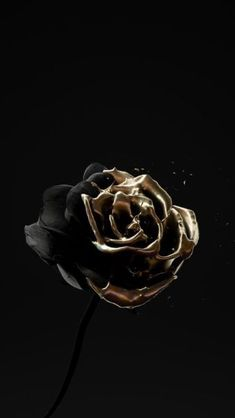 renders in black and gold materials. Bleeding heart, oozing skull, and a lackluster rose. Black And Gold Aesthetic, Black Aesthetic Wallpaper, White Aesthetic, Aesthetic Iphone Wallpaper, Aesthetic Roses, Aesthetic Header, Aesthetic Backgrounds, Black Backgrounds, Aesthetic Wallpapers