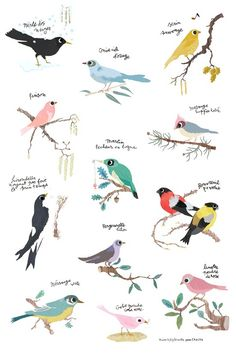 Birds on Twigs
