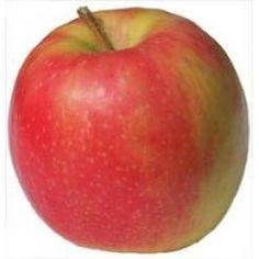 pink lady apples <3