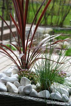 Kesän ensimmäinen ruukkuistutus. #piha #puutarha #garden arjentimantteja.blogspot.com