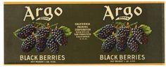 ARGO Brand Vintage Blackberries Can Label