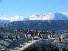 Cabo de Hornos, Chile. XII Región de Magallanes y Antártica Chilena.