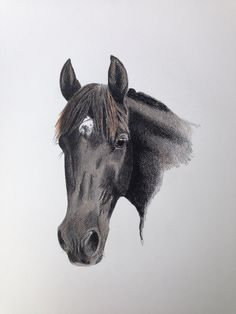 Dit mooie paard heb ik nagetekend van een foto. Als echte paardegek is dit natuurlijk een super leuke opdracht.