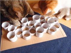 Jeu fait-maison pour chats - 10 DIY pour chiens et chats - Once a DIY                                                                                                                                                                                 Plus