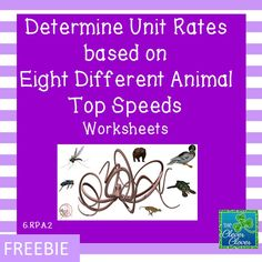 This product includes eight animal unit rate problems.  All of the problems were written as if the animals could run/fly/swim at top speed for extended periods of time. Although in real life, the animals are not able to maintain top speeds for extended periods. Students are asked to predict the animal speeds from slowest to fastest before they begin their calculations.  When the task is complete, students determine how close the actual top speeds/hour were to their original prediction.