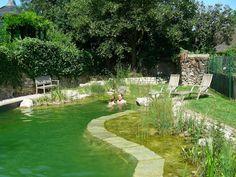 piscine naturelle en Allemagne