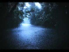 """60 mins"" Nature Heavy Rainstorm Sounds (No Music) - YouTube"