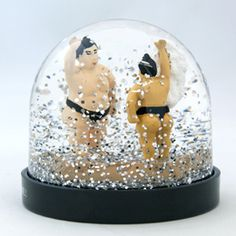 sumo wrestlers in the snowdome