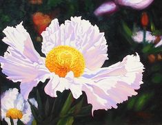 """Lifetime achievement award    Matilija poppy    Hollywood hands out laurels to performers who keep producing year after year; we decided to do the same for a flower. """"Mary Elizabeth Parsons (author of the 1897 book The Wild Flowers of California) called the matilija poppy 'the queen of all our flowers"""