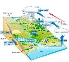 The Hydrological Cycle Geography Activities, Physical Geography, Geography Lessons, World Geography, Earth And Space Science, Science And Nature, Teaching 6th Grade, Weather Science, English Learning Spoken