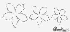 Рождественская звезда ПУАНСЕТТИЯ из бумаги. Шаблоны и мастер-класс (15) (700x329, 63Kb)