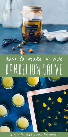Learn how to make this dandelion salve recipe using foraged dandelions! This homemade herbal salve is especially good for sore muscles, joints, and dry skin. Healing Herbs, Medicinal Herbs, Dandelion Oil, Salve Recipes, Dandelion Recipes, Health Heal, Herbal Remedies, Natural Remedies, Herbs