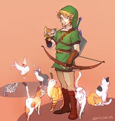 Link with cats