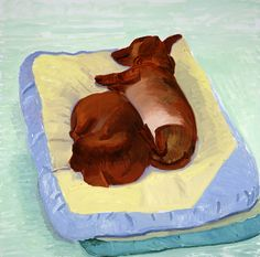 David Hockney, Dog Painting 1995 oil on canvas, Paper: 28 x 29 in x cm), Framed: 29 x 30 in x cm), Private collection David Hockney Artist, David Hockney Paintings, Arte Dachshund, Pop Art Movement, Animal Projects, Dog Paintings, Museum Of Fine Arts, Dog Art, Dibujo