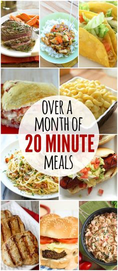 Over a month worth of meals that only take 20 minutes or less to prepare! Check it out on lilluna.com