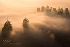 Fog Invasion by danyeidphotography #architecture #building #architexture #city #buildings #skyscraper #urban #design #minimal #cities #town #street #art #arts #architecturelovers #abstract #photooftheday #amazing #picoftheday