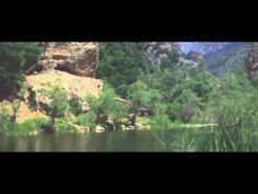Yogi Bhajan talks about Nanak and Japji Sahib - Harimander Singh - YouTube