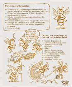 Manual Apícola Ilustrado - Beekeeping Illustrated Manual.