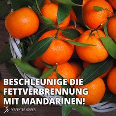 Natürlicher Fatburner: Mandarinen 👍🔥   🍊Mandarinen senken den Fettgehalt im Körper und schützen sowohl vor Übergewicht als auch Altersdiabetes. 🍊Mandarinen enthalten die Vitamine A, C, E, Folsäure und sind reich an Kalium und Kalzium. 🍊Wirken antioxidativ und schützen die Zellen. 🍊Aufgrund ihres hohen Vitamin-C-Gehalts stärken Mandarinen unser Immunsystem. 🍊Mandarinen regen den Stoffwechsel an und sind gut für die Schilddrüse. 🍊100 g enthalten etwa 50 kcal.