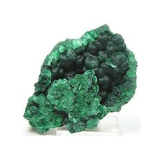 Dark Green Fibrous and Botryoidal Malachite: most important healing stone but should be handled with caution due to its immense power, and is toxic in its unpolished form; energy amplifier (both good and bad); activates spiritual guidance, visualization, and psychic visions; is a great stone for scrying   #perspicacityparty #magicgeodes #malachite