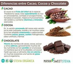Cacao, cocoa y chocolate Cacao Recipes, Gourmet Recipes, Spanish Chocolate, Cocoa Plant, A Food, Food And Drink, Juicing Benefits, Dessert, Natural Medicine