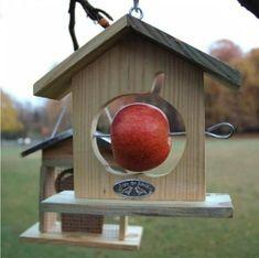 red cardinal bird house plans                                                                                                                                                                                 More #birdhouses