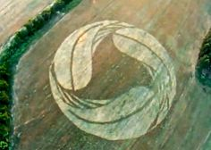 Crop Circle at Karbinci, nr Shtip.MACEDONIA. Reported 1st July 2012