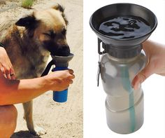 This handy travel mug for dogs combines a water bottle and water bowl all-in-one.