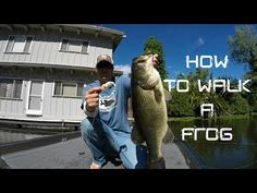 Bass Fishing: How to walk a Frog - YouTube