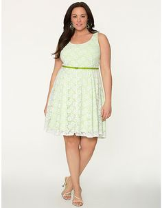 Plus Size Lace Skater Dress by Lane Bryant | Lane Bryant
