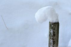 Winter Snow, Photography, Beautiful, Photograph, Photo Shoot, Fotografie, Fotografia