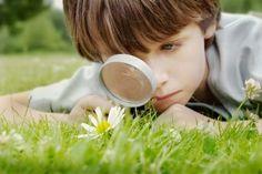 Blog de experimentos de ciencias en educación infantil