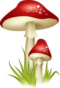 "Photo from album ""Грибы"" on Yandex. Mushroom Drawing, Mushroom Art, Mushroom Clipart, Woodworking For Kids, Fruit Art, Whimsical Art, Colouring Pages, Free Pictures, Printable Art"