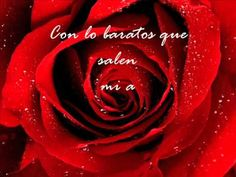 Rosas---La Oreja de Van Gogh (letra) - YouTube, teaching linking (encadenamiento) of words in Spanish speech
