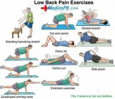 Relieve Lower Back Pain Stretches to relieve lower back pain | Insight