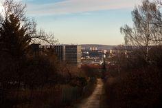 Pohled na Brno z kraví hory.