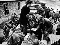 American soldiers liberating prisoners from a concentration camp at the end of WWII.