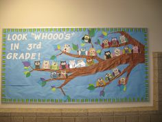 """Owl Themed """"Look Whooo's in Grade!"""" Bulletin Board for Back to School (Classroom Compulsion)"""