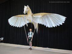 Flight Museum Pegasus - michaelcurrydesign